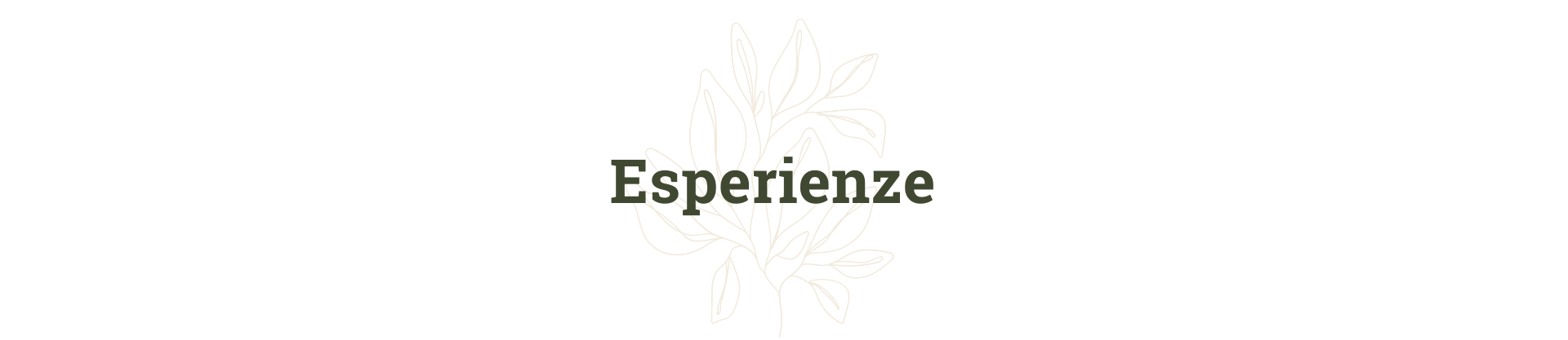 Esperienze_natalesostenibile